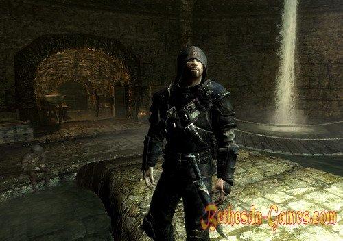 Skyrim Thieves Guild