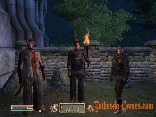 thieves guild oblivion