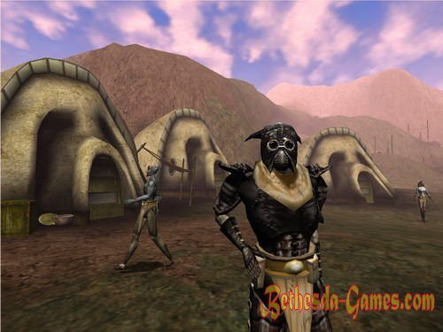 The Elder Scrolls III: Bloodmoon » Bethesda Games - Plunge